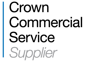 Supplier to the UK Government